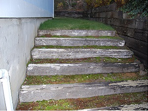 bandy steps 99